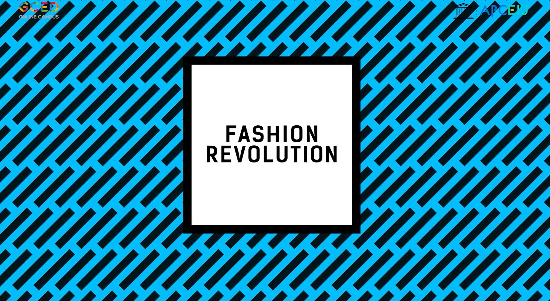 Fashion Revolution_Thumbnail (2).png